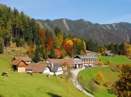 Berggasthof Lausegger图片