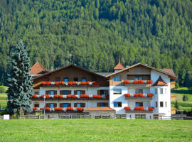 Hotel Tannenhof图片