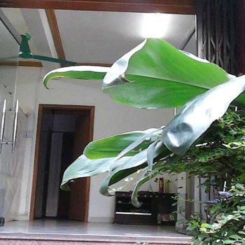 广州温馨家庭旅馆图片