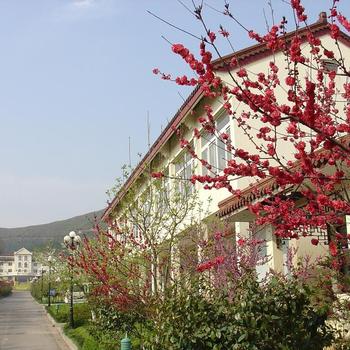 永年家庭旅馆图片_6